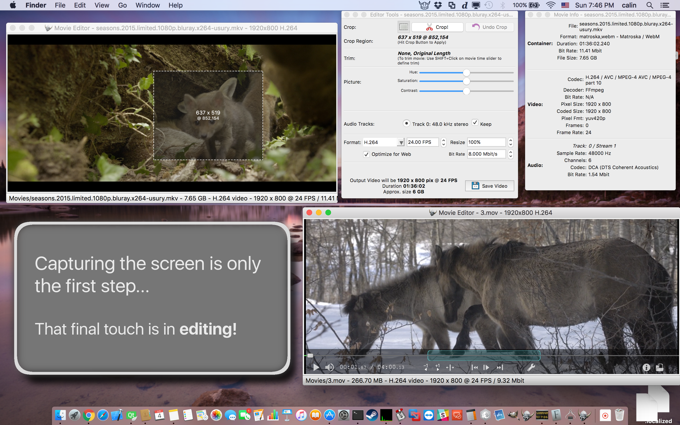 Viking Recorder -- Full Featured Screen Recording Software